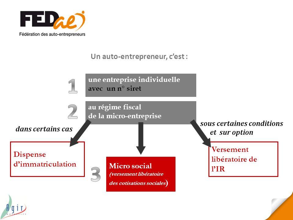 Dispense dimmatriculation Micro social (versement libératoire des cotisations sociales ) Versement libératoire de lIR une entreprise individuelle avec