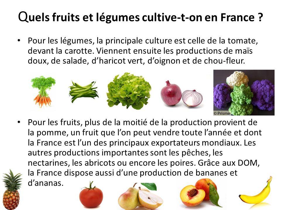Q uels fruits et légumes cultive-t-on en France ? Pour les légumes, la principale culture est celle de la tomate, devant la carotte. Viennent ensuite