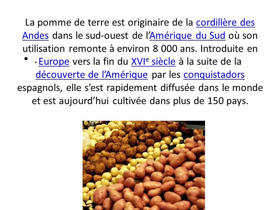 La pomme de terre est originaire de la cordillère des Andes dans le sud-ouest de lAmérique du Sud où son utilisation remonte à environ 8 000 ans. Intr