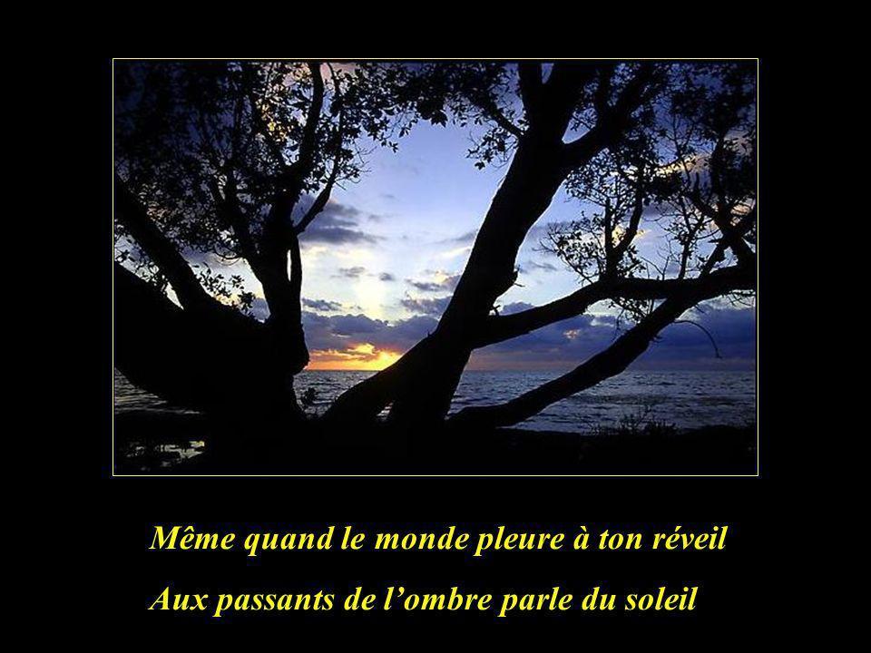 Chanter la Vie la nuit le jour Chanter lAmour chercher lAmi