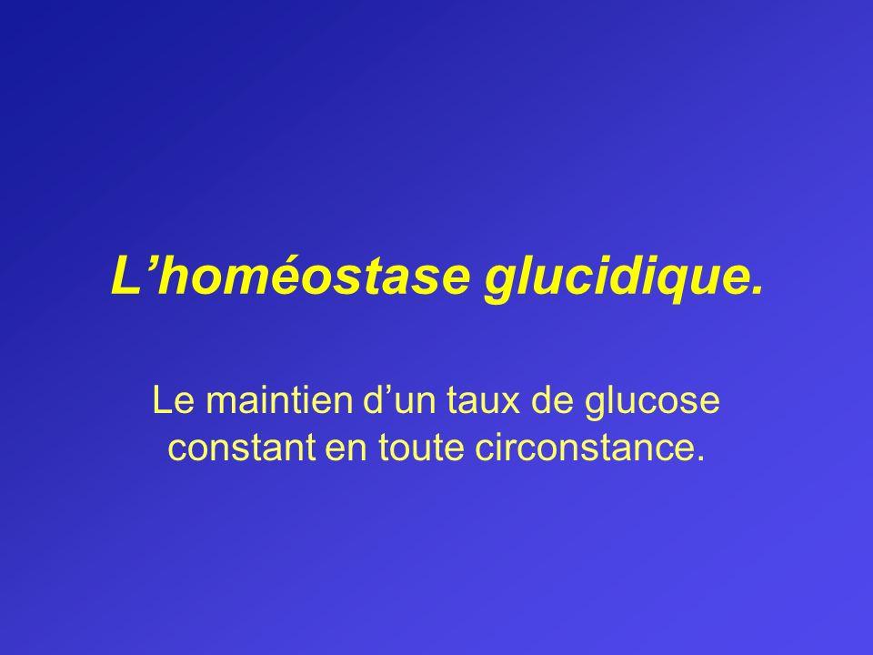 Lhoméostase glucidique. Le maintien dun taux de glucose constant en toute circonstance.