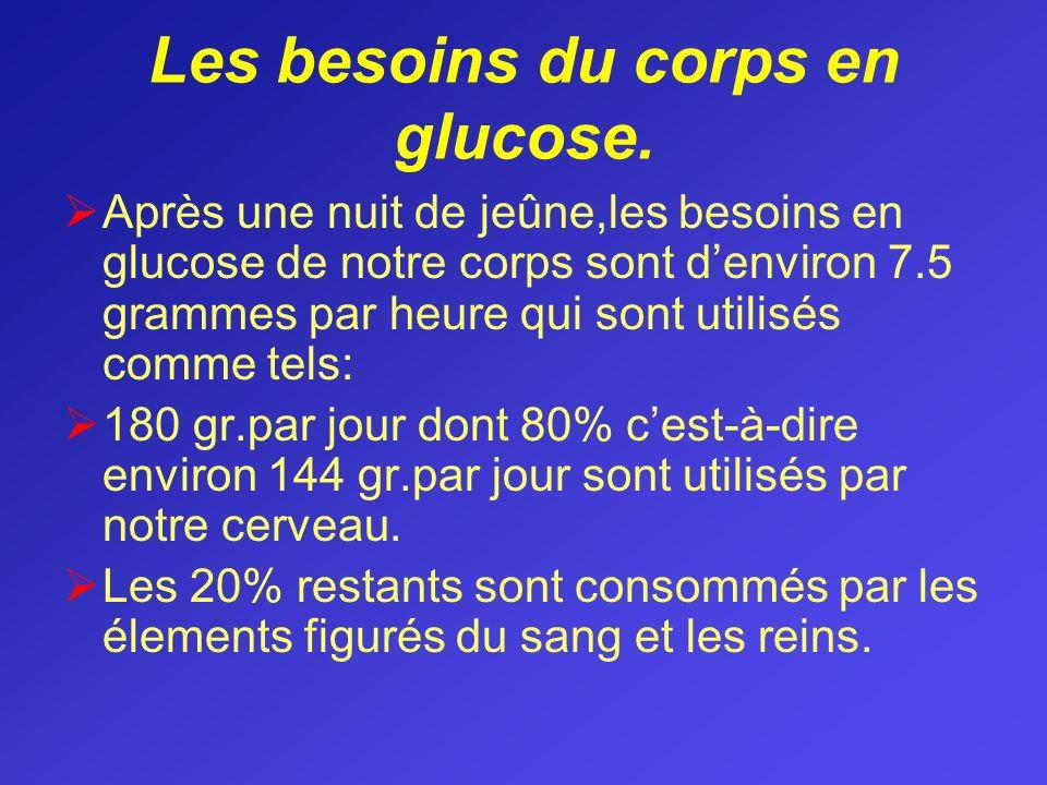 Les besoins du corps en glucose. Après une nuit de jeûne,les besoins en glucose de notre corps sont denviron 7.5 grammes par heure qui sont utilisés c