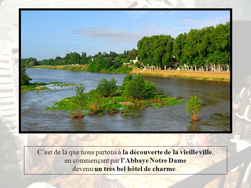Souvent lon arrive par le bord de Loire ou lon trouve à se garer et on admire alors ce fleuve majestueux et sauvage.
