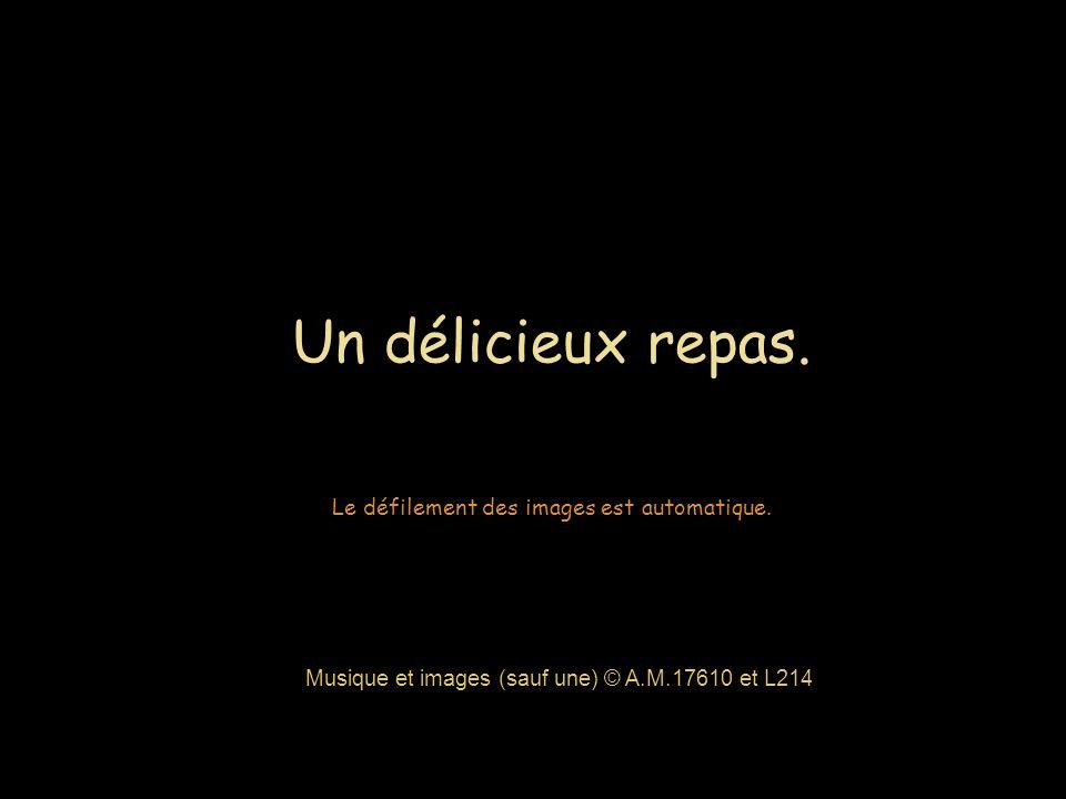 Si vous avez mangé du foie gras lors d un repas de fête, vous ignoriez que vous étiez peut-être complice des tortures que vous venez de voir.