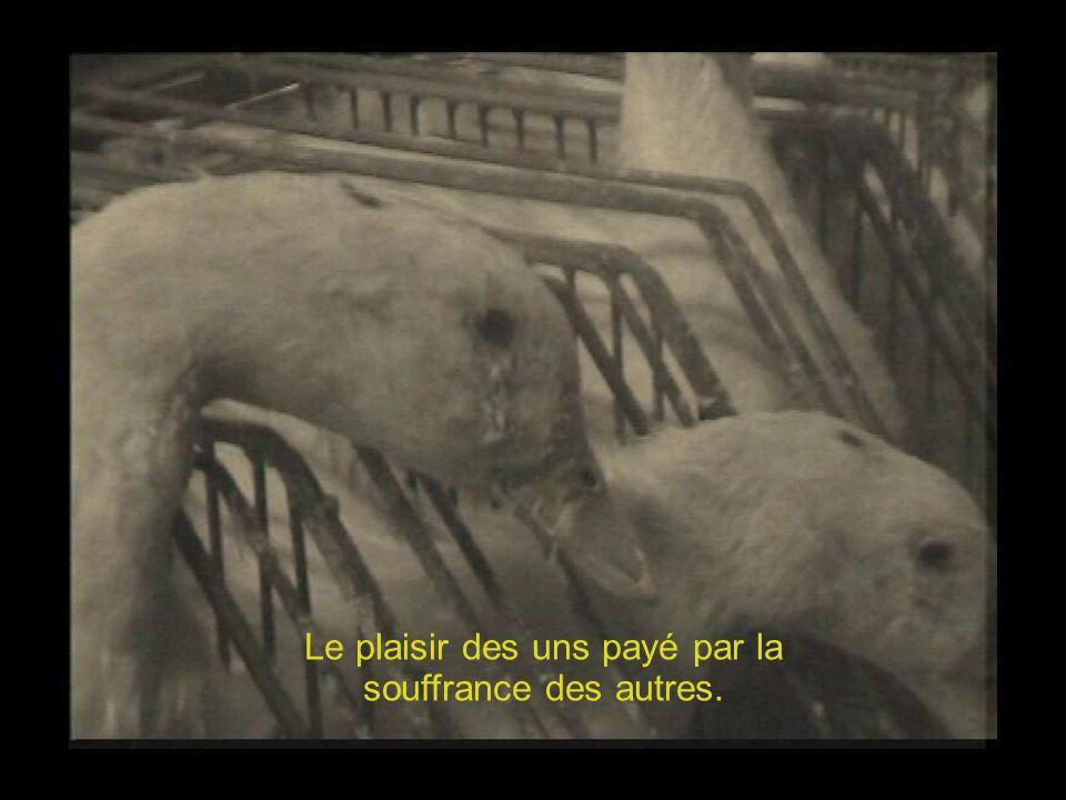 - LE STRESS, LA NUIT -