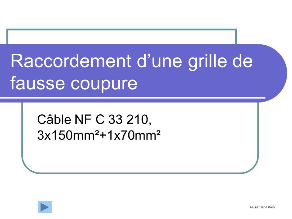 Raccordement dune grille de fausse coupure Câble NF C 33 210, 3x150mm²+1x70mm² PRAX Sébastien