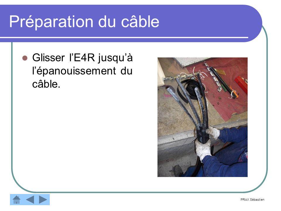 Préparation du câble Glisser lE4R jusquà lépanouissement du câble. PRAX Sébastien