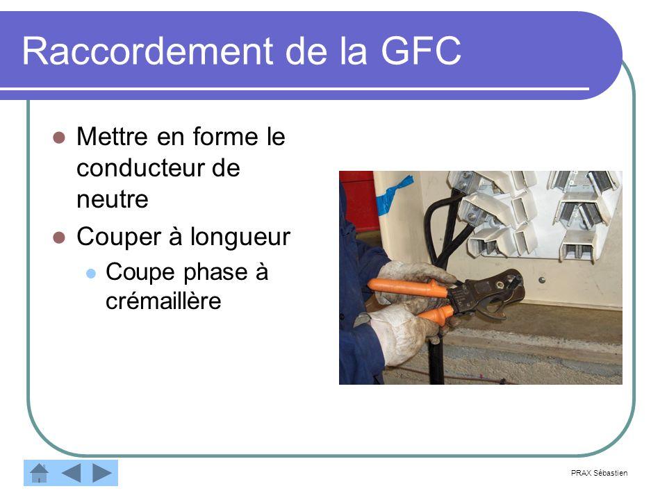 Raccordement de la GFC Mettre en forme le conducteur de neutre Couper à longueur Coupe phase à crémaillère PRAX Sébastien