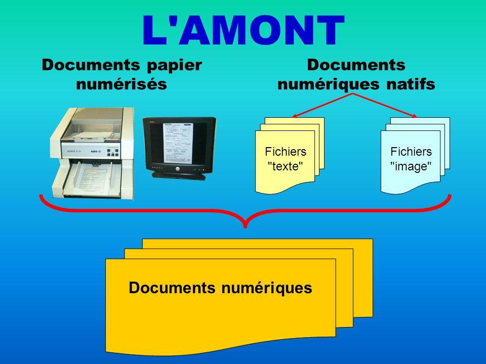 La micrographie informatique ne peut fonctionner qu à partir de documents numériques.