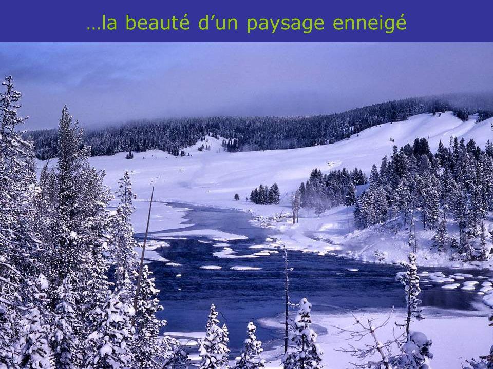 …de la symétrie dun cristal de neige jusquà…