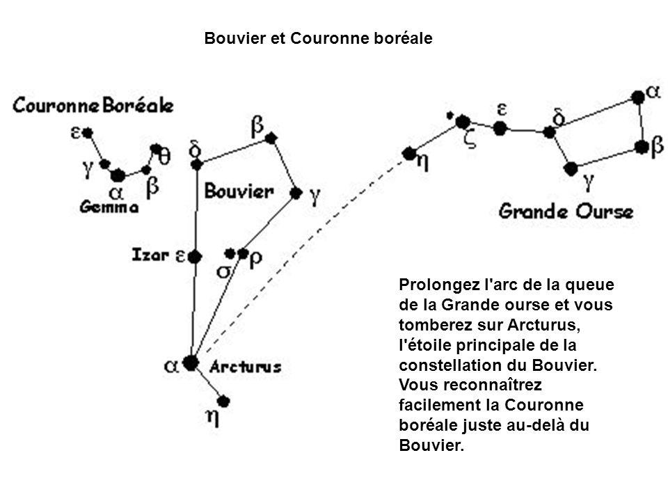 Prolongez l'arc de la queue de la Grande ourse et vous tomberez sur Arcturus, l'étoile principale de la constellation du Bouvier. Vous reconnaîtrez fa