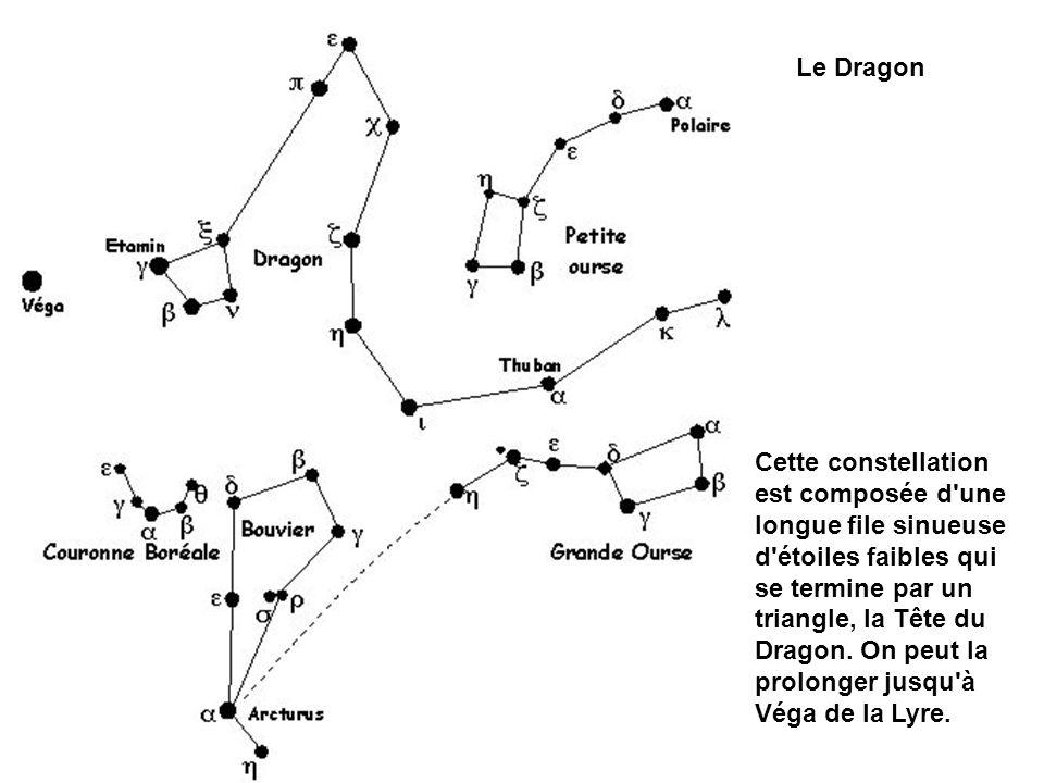 Cette constellation est composée d'une longue file sinueuse d'étoiles faibles qui se termine par un triangle, la Tête du Dragon. On peut la prolonger
