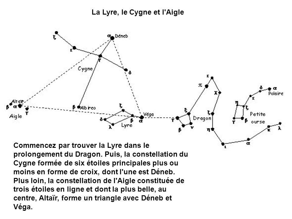 La Lyre, le Cygne et l'Aigle Commencez par trouver la Lyre dans le prolongement du Dragon. Puis, la constellation du Cygne formée de six étoiles princ