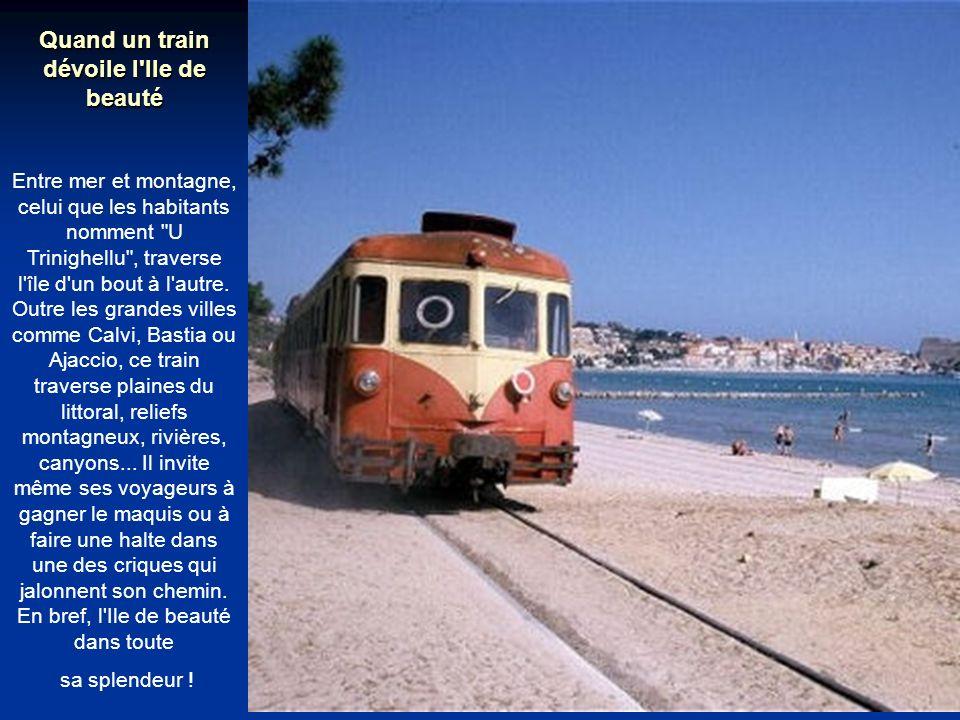 Petit trésor du haut-pays niçois Au départ de Nice, le Train des Merveilles emmène ses visiteurs aux portes du Mercantour.