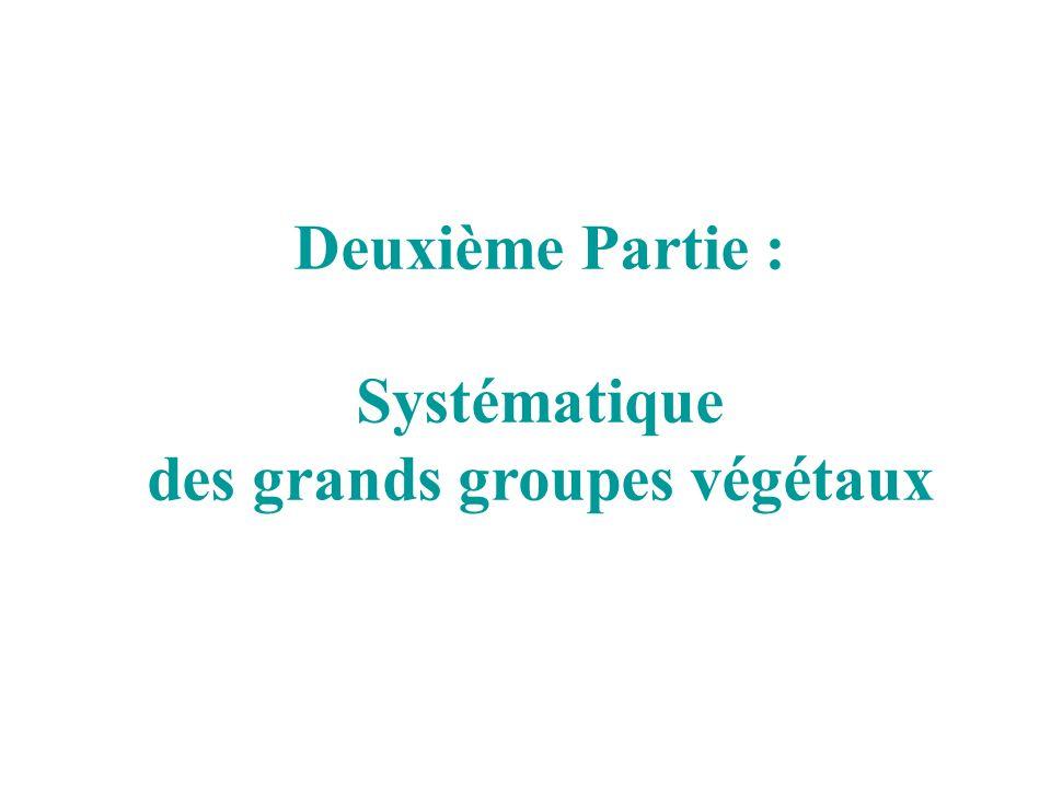 Deuxième Partie : Systématique des grands groupes végétaux