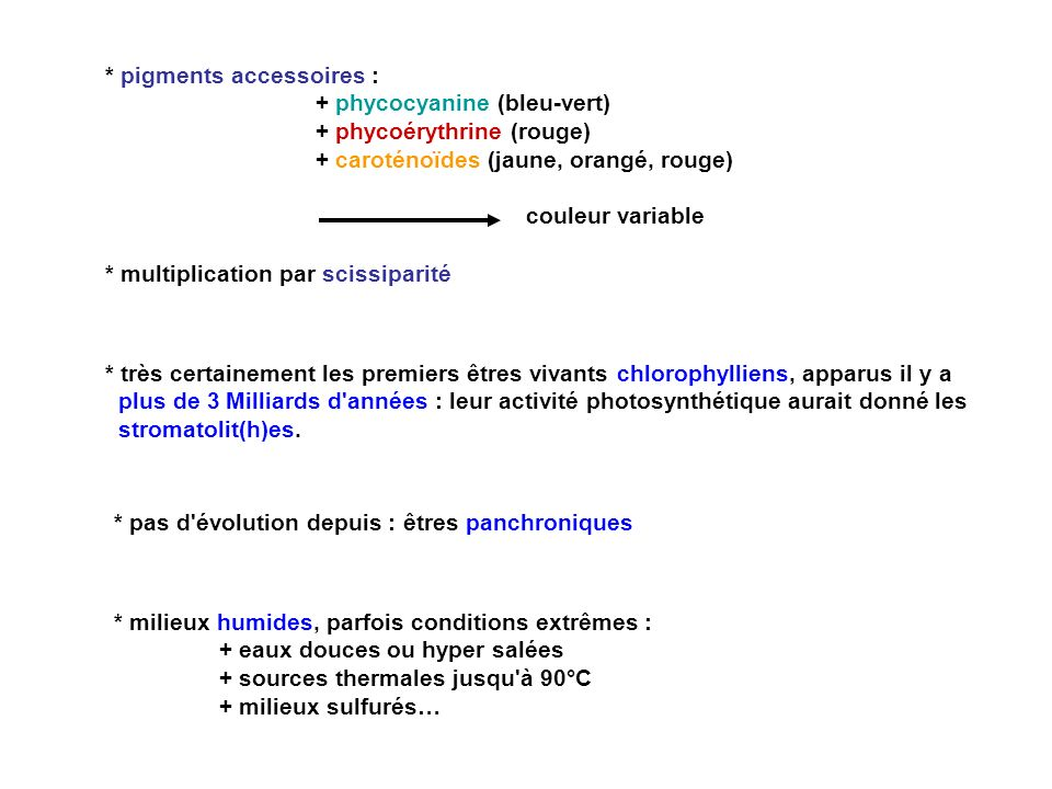 Rhodophytes (Algues rouges) Chlorobiontes chlorophylles a + b, amidon Chlorophytes (Algues vertes) Lignée verte (chloroplaste à 2 membranes) Embryophytes (embryon pluricellulaire différencié) Bryophytes s.l.