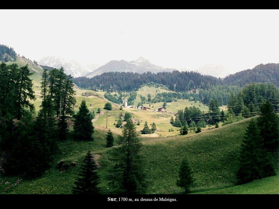 Sur, 1700 m, au dessus de Muleigns.