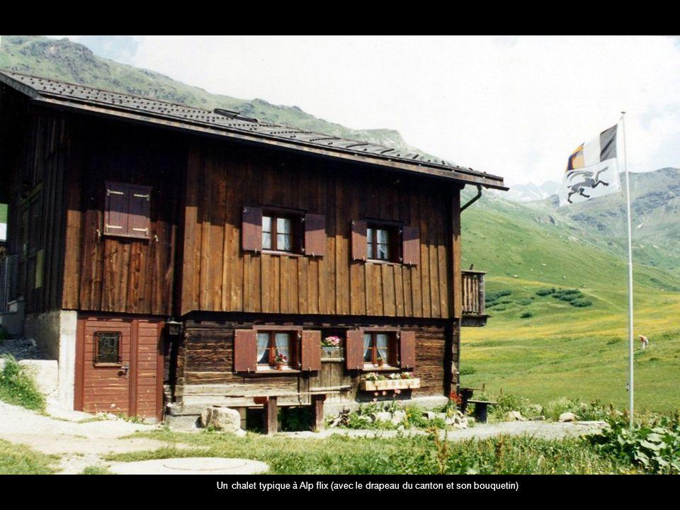 Un chalet typique à Alp flix (avec le drapeau du canton et son bouquetin)