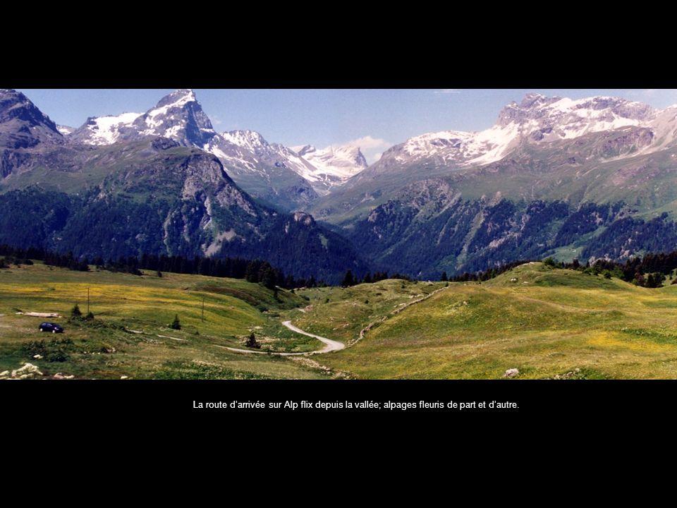 La route darrivée sur Alp flix depuis la vallée; alpages fleuris de part et dautre.