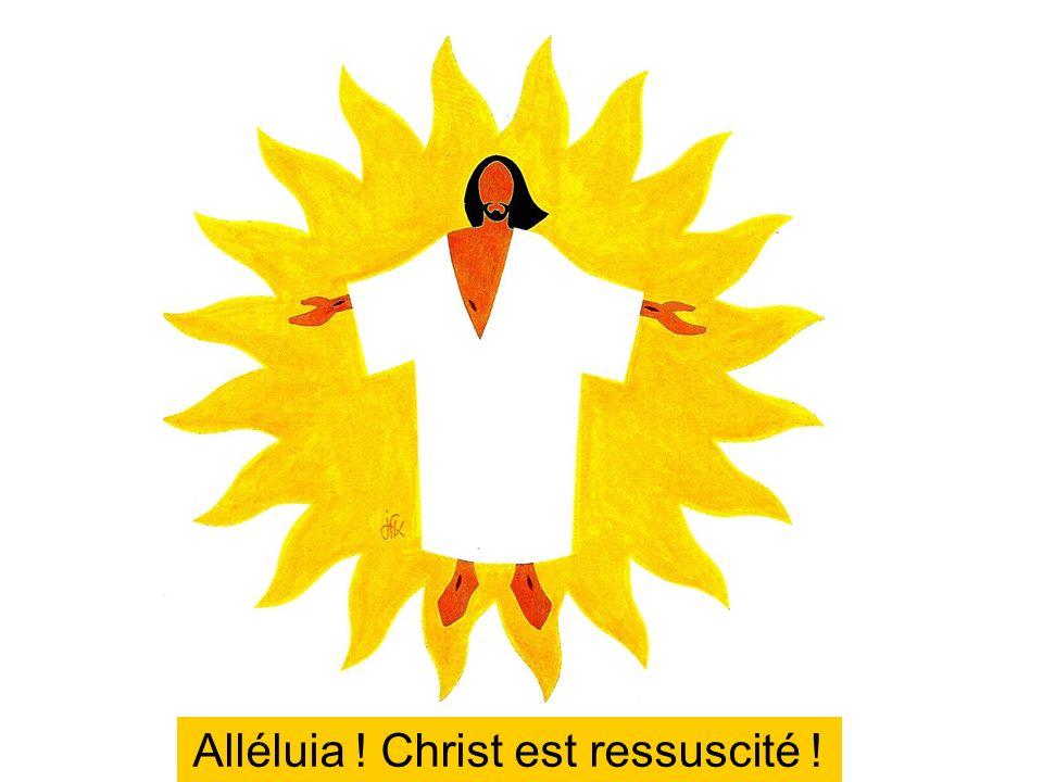 Alléluia ! Christ est ressuscité !