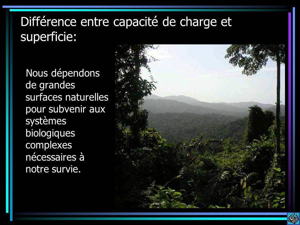 Différence entre capacité de charge et superficie: Nous dépendons de grandes surfaces naturelles pour subvenir aux systèmes biologiques complexes néce
