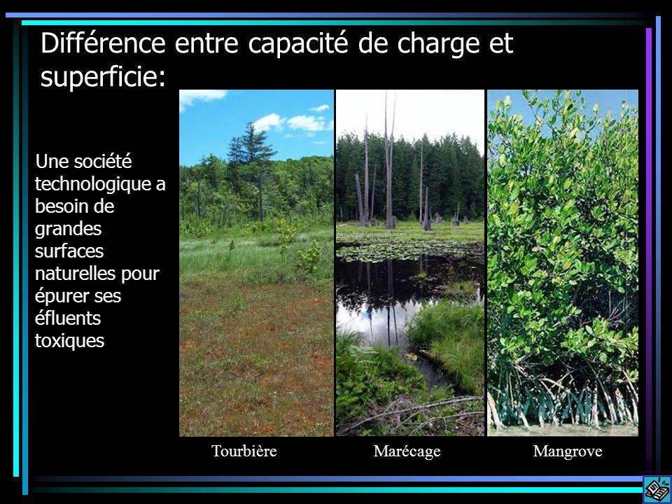 Différence entre capacité de charge et superficie: Une société technologique a besoin de grandes surfaces naturelles pour épurer ses éfluents toxiques