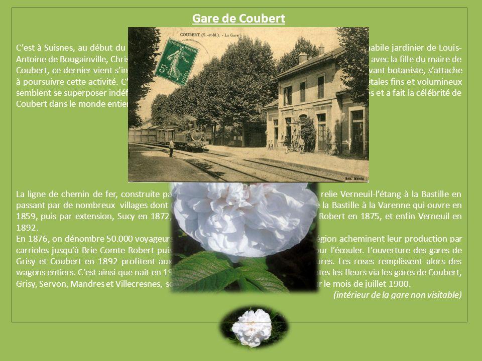 Gare de Coubert Cest à Suisnes, au début du 19 ème siècle, que se développe la culture de la rose grâce à lhabile jardinier de Louis- Antoine de Bougainville, Christophe Cochet.