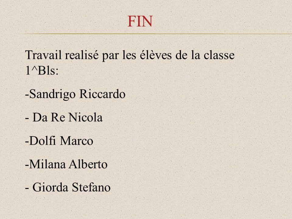 FIN Travail realisé par les élèves de la classe 1^Bls: -Sandrigo Riccardo - Da Re Nicola -Dolfi Marco -Milana Alberto - Giorda Stefano