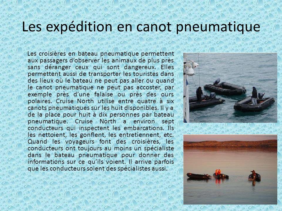Les expédition en canot pneumatique Les croisières en bateau pneumatique permettent aux passagers dobserver les animaux de plus près sans déranger ceu