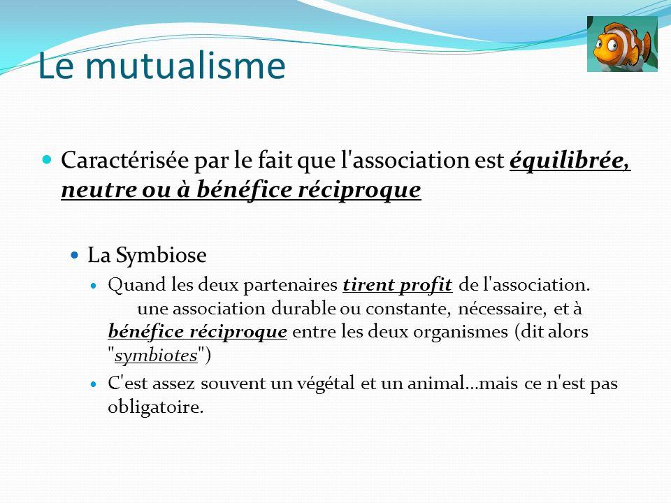 Caractérisée par le fait que l'association est équilibrée, neutre ou à bénéfice réciproque La Symbiose Quand les deux partenaires tirent profit de l'a
