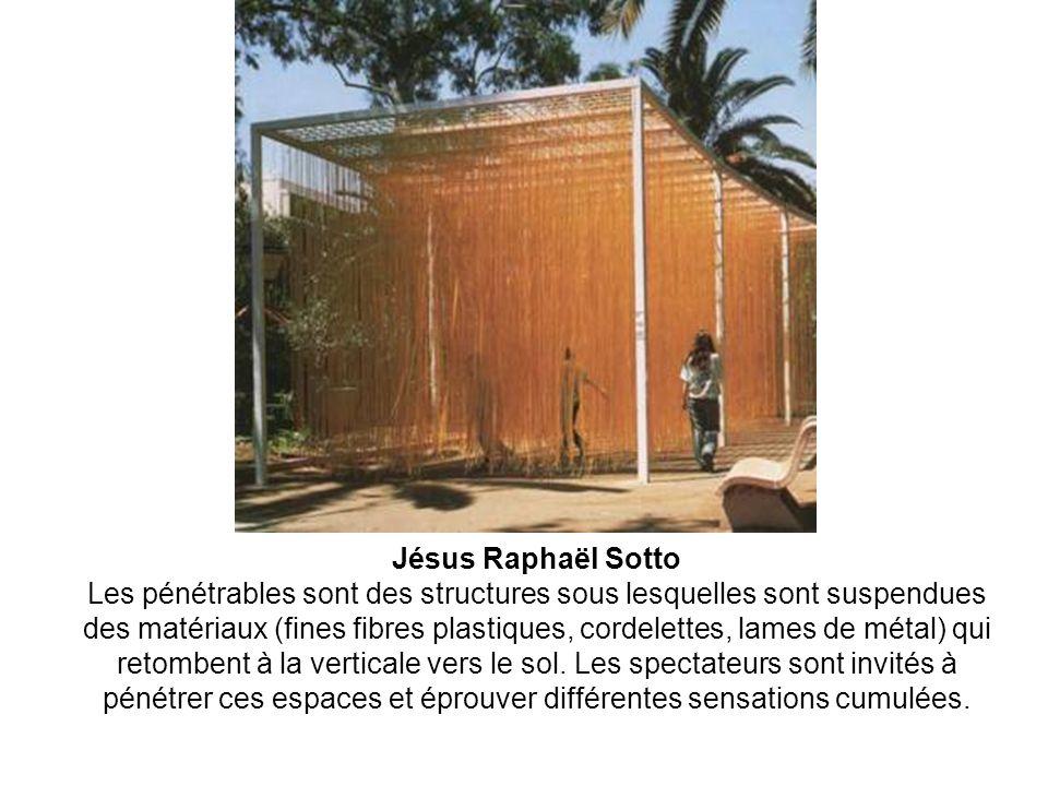 Jésus Raphaël Sotto Les pénétrables sont des structures sous lesquelles sont suspendues des matériaux (fines fibres plastiques, cordelettes, lames de