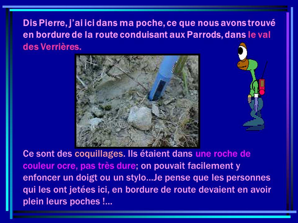 Notre Jura qui a mis des millions dannées à se former, continue entre les mains des agents de lérosion…Le Larmont dorigine ne ressemble donc pas au Larmont actuel….