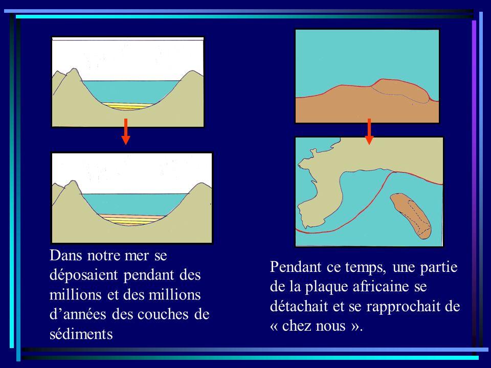 Imagine quà lère Tertiaire, les Alpes se forment au sud-est du Jura par suite de la collision dun morceau de plaque détaché de lAfrique avec notre « Europe » et les couches de roches initialement horizontales de notre Jura, se plissent comme du carton ondulé.