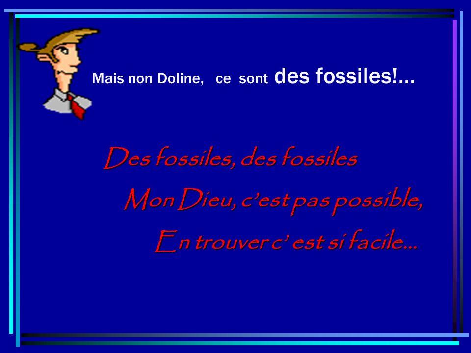 Mais non Doline, ce sont des fossiles!… Des fossiles, des fossiles Mon Dieu, cest pas possible, Mon Dieu, cest pas possible, En trouver c est si facile… En trouver c est si facile…