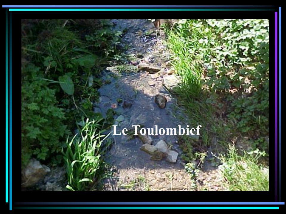 Cest ici que le ruisseau des Lavaux se jette dans le Doubs.