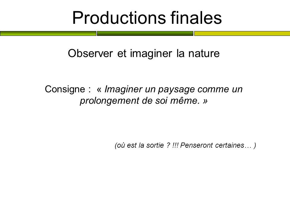 Productions finales Observer et imaginer la nature Consigne : « Imaginer un paysage comme un prolongement de soi même. » (où est la sortie ? !!! Pense