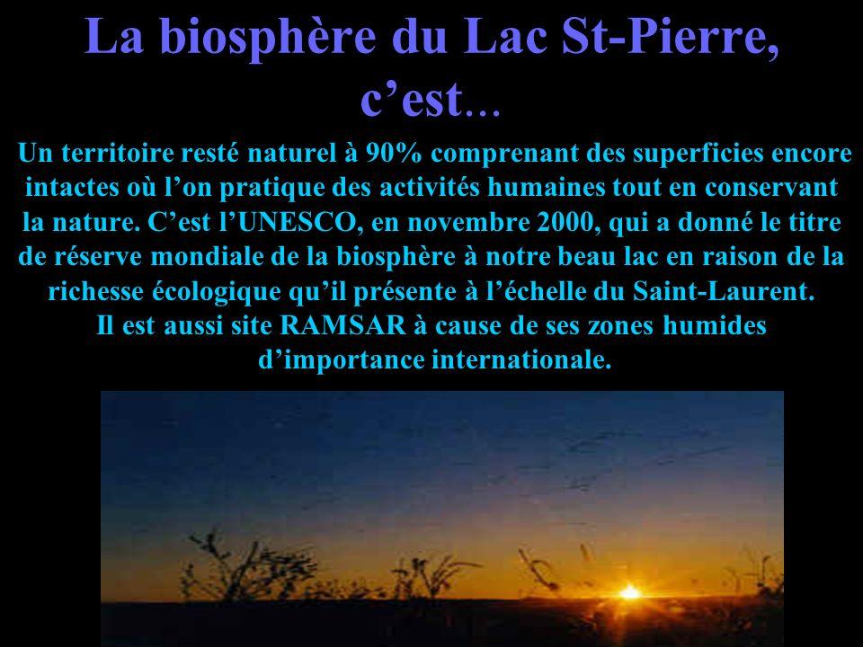 La réserve mondiale de la biosphère du Lac St-Pierre Vous découvrirez: ce quest une biosphère; sa situation géographique; les activités les plus impor