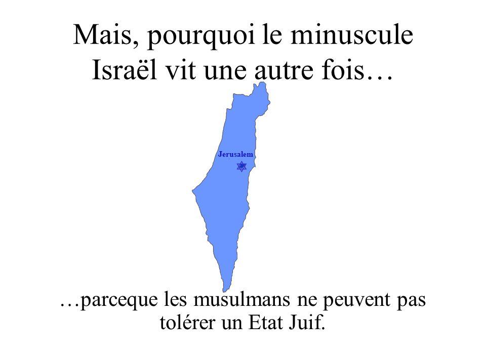 Jerusalem Mais, pourquoi le minuscule Israël vit une autre fois… …parceque les musulmans ne peuvent pas tolérer un Etat Juif.