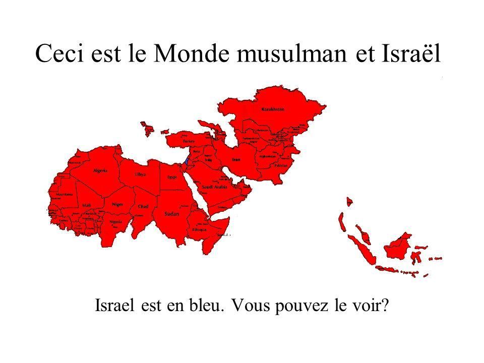 Ceci est le Monde musulman et Israël Israel est en bleu. Vous pouvez le voir?