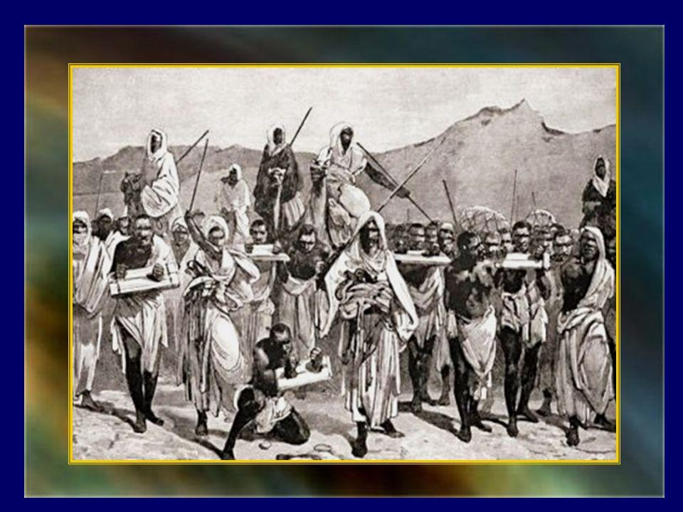 Lesclavage en terre dIslam est une donnée historique universellement reconnue, y compris par les historiens musulmans.