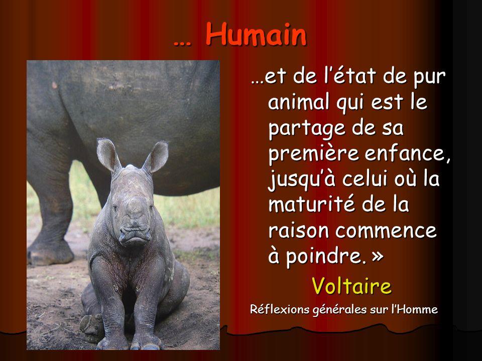 … Humain …et de létat de pur animal qui est le partage de sa première enfance, jusquà celui où la maturité de la raison commence à poindre.