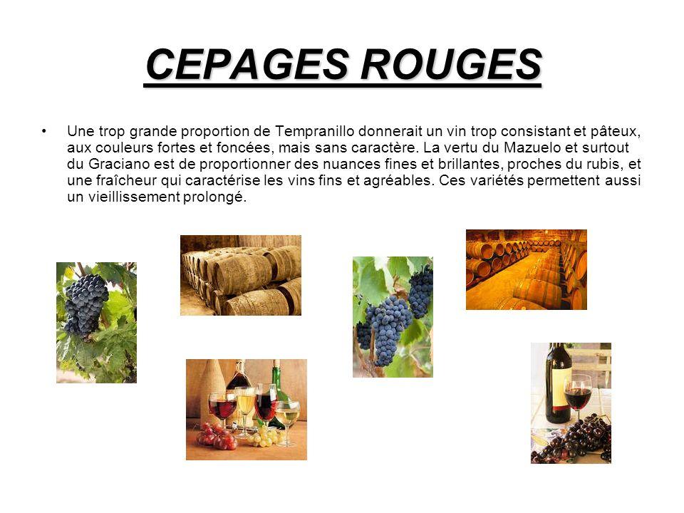 CEPAGES ROUGES Une trop grande proportion de Tempranillo donnerait un vin trop consistant et pâteux, aux couleurs fortes et foncées, mais sans caractère.