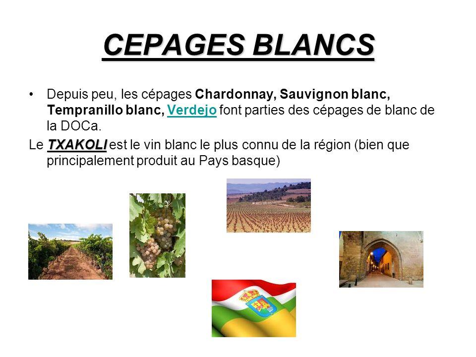 CEPAGES BLANCS Depuis peu, les cépages Chardonnay, Sauvignon blanc, Tempranillo blanc, Verdejo font parties des cépages de blanc de la DOCa.Verdejo TXAKOLI Le TXAKOLI est le vin blanc le plus connu de la région (bien que principalement produit au Pays basque)