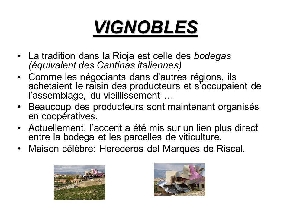 VIGNOBLES La tradition dans la Rioja est celle des bodegas (équivalent des Cantinas italiennes) Comme les négociants dans dautres régions, ils achetaient le raisin des producteurs et soccupaient de lassemblage, du vieillissement … Beaucoup des producteurs sont maintenant organisés en coopératives.