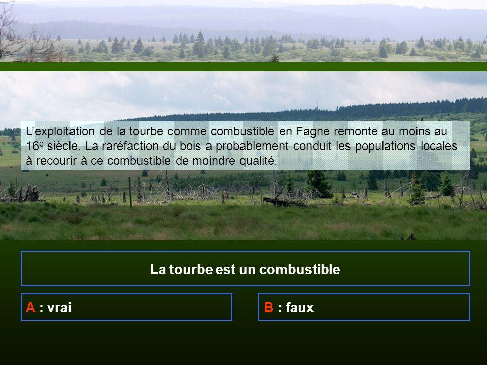La tourbe est un combustible A : vraiB : faux Lexploitation de la tourbe comme combustible en Fagne remonte au moins au 16 e siècle.