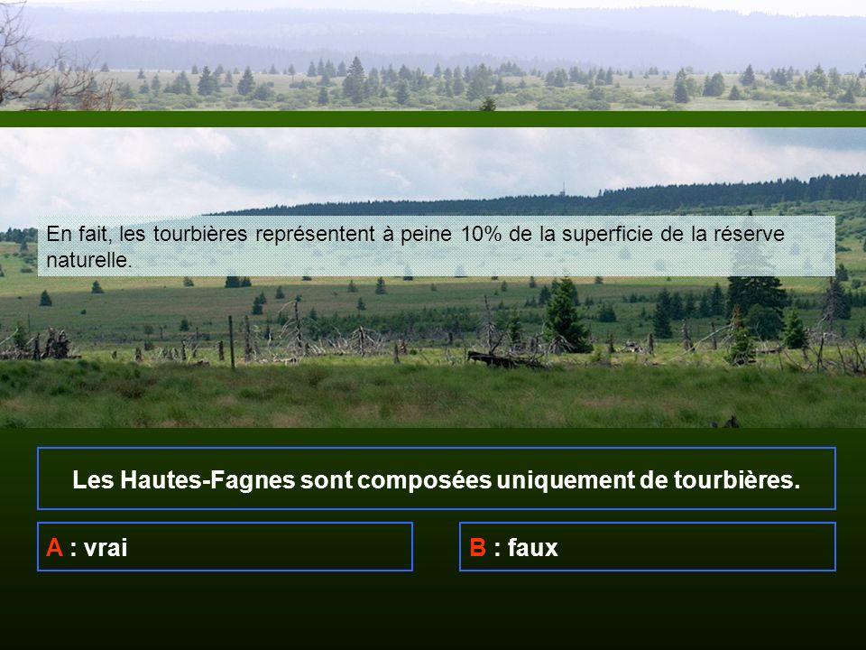 Les Hautes-Fagnes sont composées uniquement de tourbières.