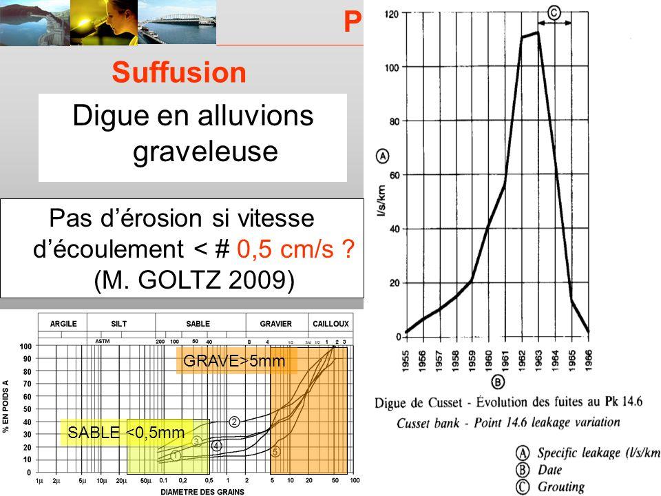 PROJET ERINOH CFMS Paris 9 décembre 09 J-J Fry Suffusion Digue en alluvions graveleuse Pas dérosion si vitesse découlement < # 0,5 cm/s ? (M. GOLTZ 20