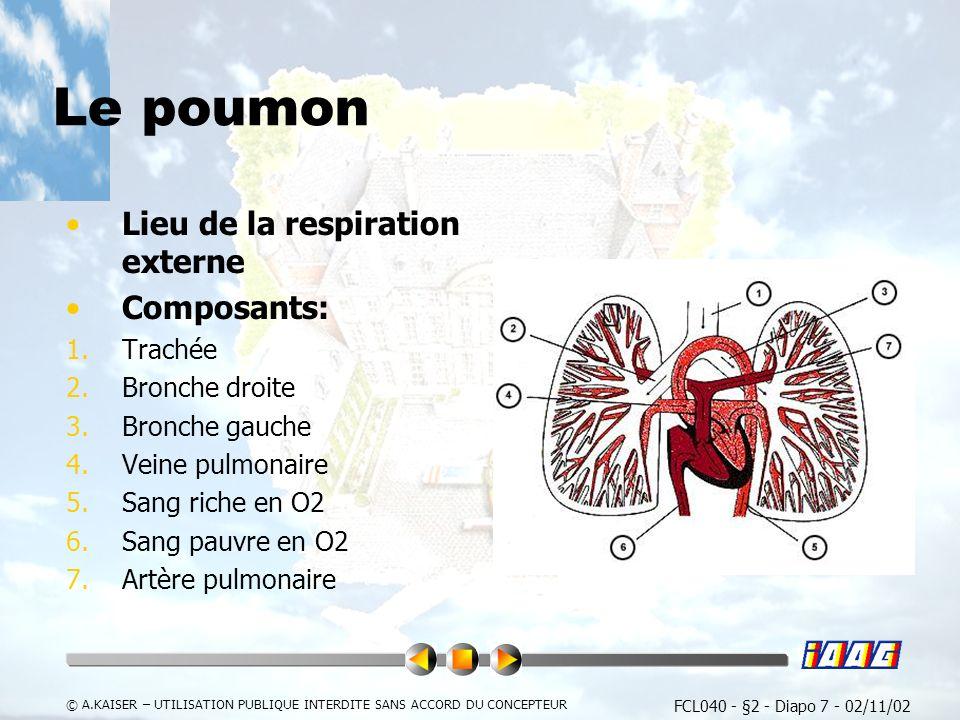 FCL040 - §2 - Diapo 7 - 02/11/02 © A.KAISER – UTILISATION PUBLIQUE INTERDITE SANS ACCORD DU CONCEPTEUR Le poumon Lieu de la respiration externe Composants: 1.Trachée 2.Bronche droite 3.Bronche gauche 4.Veine pulmonaire 5.Sang riche en O2 6.Sang pauvre en O2 7.Artère pulmonaire