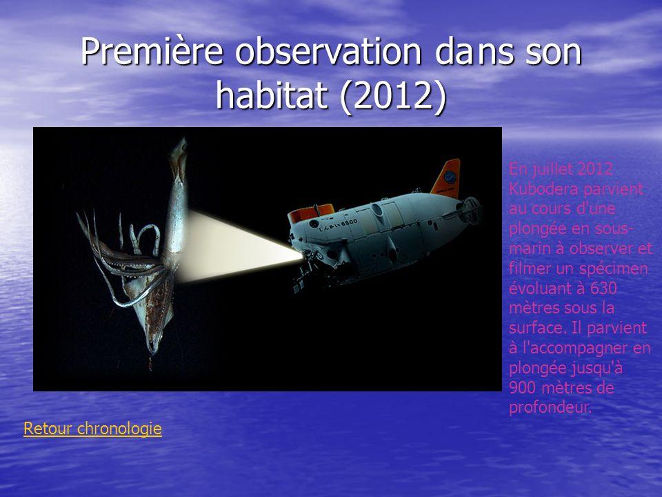 Première observation dans son habitat (2012) Retour chronologie En juillet 2012 Kubodera parvient au cours d'une plongée en sous- marin à observer et