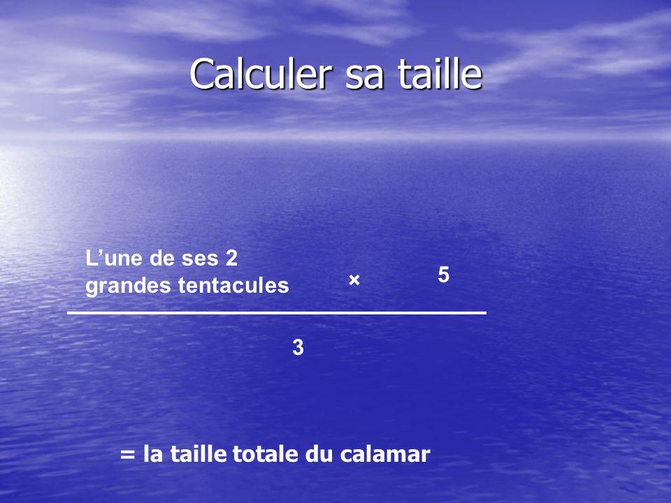 Calculer sa taille Lune de ses 2 grandes tentacules × 5 3 = la taille totale du calamar